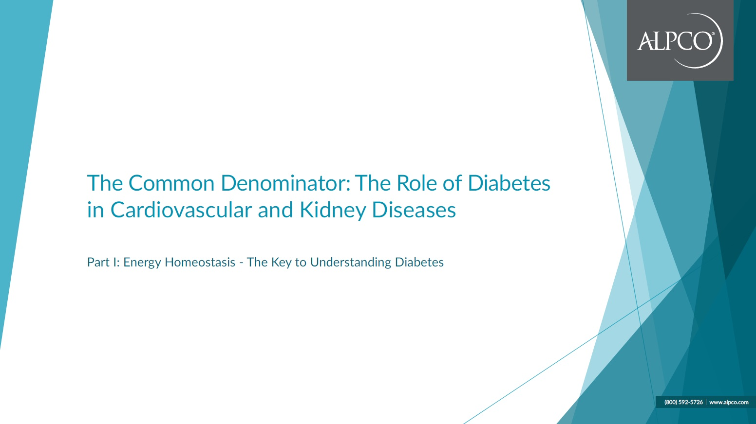 "Click this thumbnail to download our eBook ""Energy Homeostasis the Key to Understanding Diabetes"""