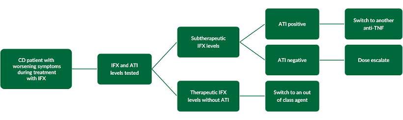 This diagram outlines the process of therapeutic drug monitoring in IBD.