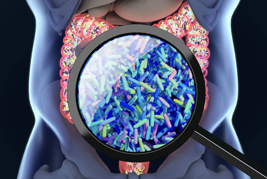 Read our blog to learn more about why scientists are researching gut permeability in NAFLD.