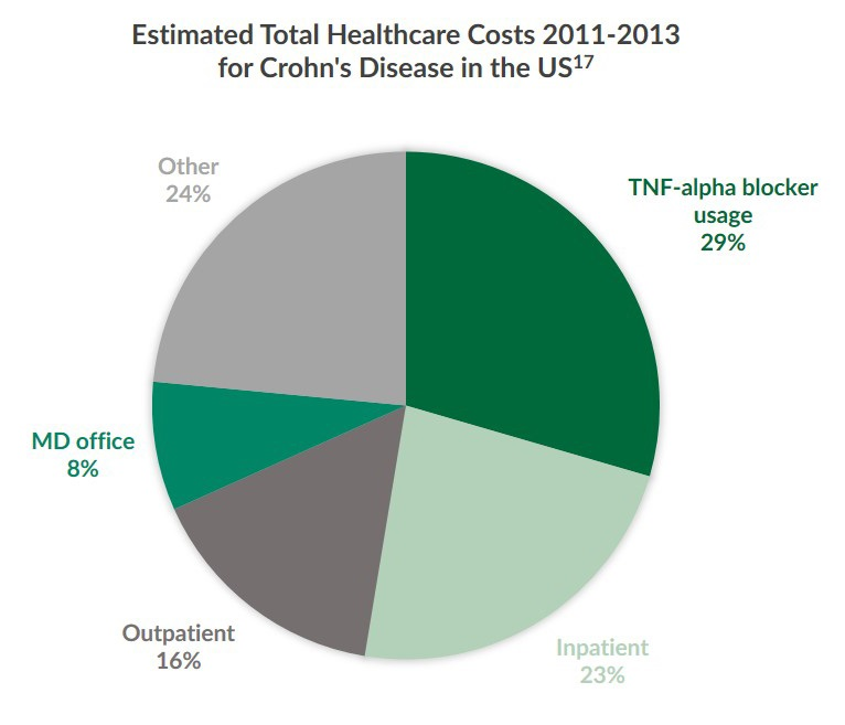 A pie chart illustrating the estimated total Crohn's Disease healthcare costs from 2011 to 2013 in the U.S.