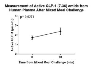 This chart illustrates Active GLP-1 (7-36) amide fasted vs. fed levels following the mixed meal tolerance test (MMTT).
